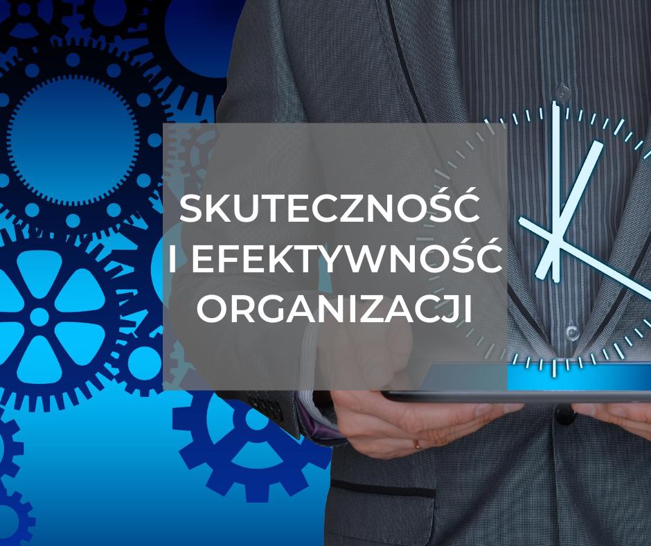 Skuteczność i efektywność organizacji – auditowanie systemu i procesu pod kątem metod i narzędzi doskonalenia jakości